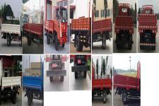 大运牌CGC1046HDE33E型载货汽车图片