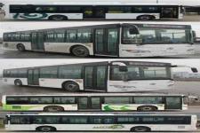 金龙牌XMQ6106BGN5型城市客车图片2