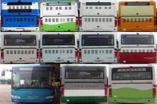 金龙牌XMQ6106BGN5型城市客车图片3