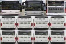 金龙牌XMQ6106BGN5型城市客车图片4