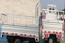 王牌牌CDW1031N2M5D型两用燃料载货汽车图片