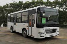 7.3米|12-25座金龙城市客车(XMQ6730AGD5)