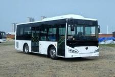 8.5米 13-25座紫象插电式混合动力城市客车(HQK6859CHEVNG)