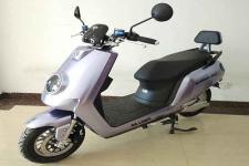 大龙DL1000DT-2A型电动两轮摩托车