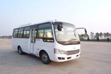6.6米 24-26座安凯客车(HFF6669KDE5FB)