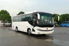 8.7米申龙SLK6873ALD5客车
