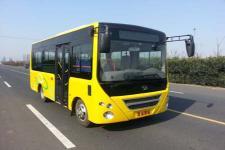 友谊牌ZGT6608DVC型城市客车图片