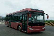 友谊牌ZGT6118LBEV型纯电动城市客车图片