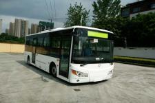 友谊牌ZGT6850LBEV型纯电动城市客车图片