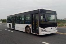 10.5米|20-40座紫象纯电动城市客车(HQK6109BEVB23)