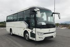 8.8米|金旅客车(XML6887J15Y)