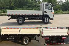 江淮牌HFC1043P91K9C2V型载货汽车图片