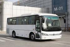 8.7米|福田客车(BJ6876U6AHB-1)