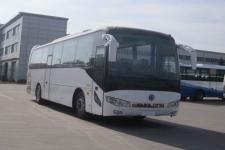 11米申龙SLK6118TSD5客车