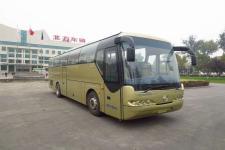 10.5米|北方豪华旅游客车(BFC6105L1D5)