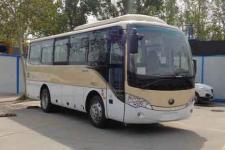 8米|宇通客车(ZK6808HQ5Z)