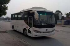8米紫象HQK6803USBEVL1纯电动城市客车