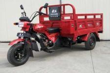 大阳牌DY175ZH-3N型正三轮摩托车