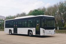 10.5米|长江纯电动低入口城市客车(FDE6101PBABEV01)