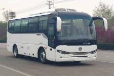 8.2米 中通纯电动城市客车(LCK6828EVQGA1)