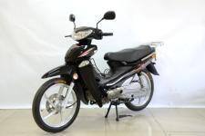 大阳牌DY48Q-2M型两轮轻便摩托车图片