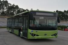 10.5米|比亚迪纯电动城市客车(BYD6101LGEV3)