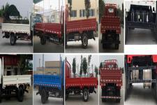 大运牌CGC1040HDD33E1型载货汽车图片