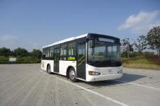 7.7米海格KLQ6770GAE5城市客车图片