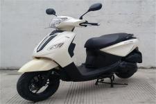 天鹰牌TY50QT-6D型两轮轻便摩托车图片
