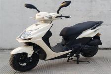 天鹰牌TY50QT-9D型两轮轻便摩托车图片