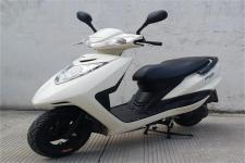 天鹰牌TY50QT-10D型两轮轻便摩托车图片
