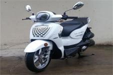 天鹰牌TY50QT-2D型两轮轻便摩托车图片