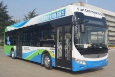 宇通牌ZK6125FCEVG10型燃料电池低入口城市客车图片