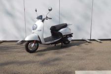 大龙DL1000DT-2型电动两轮摩托车