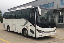 8.2米金龙XMQ6821CYD5C客车图片