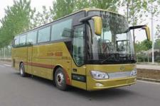 10.5米|24-46座安凯客车(HFF6101K10D1E5)