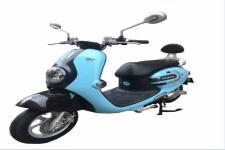 绿佳LJ1000DT型电动两轮摩托车