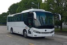 8.7米申龍SLK6873ALD6客車圖片