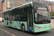 12米|20-46座安凯纯电动低地板城市客车(HFF6129G03EV12)