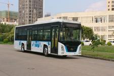 12米|19-38座长江纯电动低地板城市客车(FDE6121PDABEV01)
