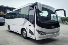 8.2米|10-23座金龙纯电动客车(XMQ6821CYBEVL4)