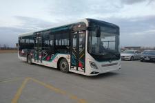10.5米|21-37座德纳迪纯电动城市客车(SK6105BEV)