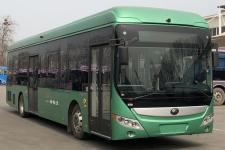 12米|20-45座宇通纯电动低入口城市客车(ZK6125BEVG60E)