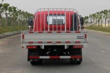 东风牌DFV1070GD5D型载货汽车图片