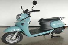 大力神DLS1200DT-9C型电动两轮摩托车