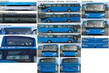金马牌TJK6110CBDEV型纯电动城市客车图片2
