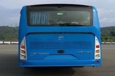金马牌TJK6110CBDEV型纯电动城市客车图片3