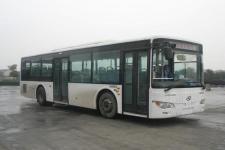 10.5米|19-42座金龙城市客车(XMQ6106BGD5)