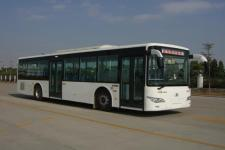 11.5米|21-46座金龙城市客车(XMQ6119BGD5)