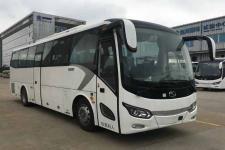 10米|24-44座金龙客车(XMQ6101CYD5C)